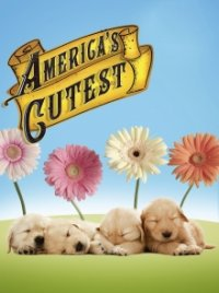 Cover America's Cutest, Poster