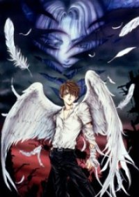 Angel Sanctuary Cover, Online, Poster