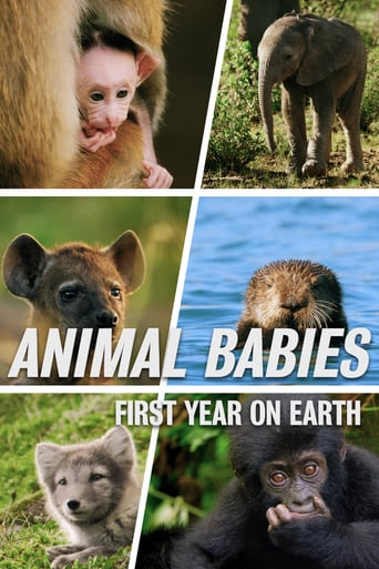 Animal Babies: First Year On Earth, Cover, HD, Serien Stream, ganze Folge