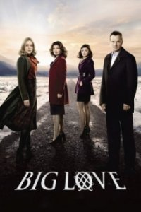 Big Love Cover, Online, Poster