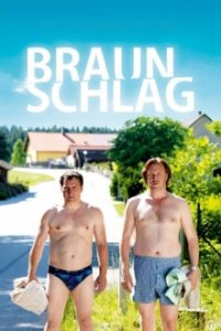 Cover Braunschlag, Poster