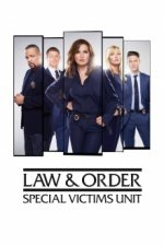 Law & Order: Special Victims Unit Cover, Law & Order: Special Victims Unit Stream