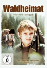 Cover Waldheimat, TV-Serie, Poster