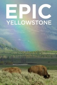 Cover Yellowstone – Park der Extreme, TV-Serie, Poster